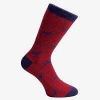 Ponožky David Aster - PES - Nohy jako v bavlnce.